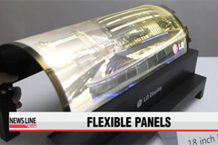 LG Display unveils flexible, transparent OLED panels