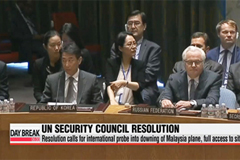 UN Security Council adopts resolution calling for international probe into downing of Malaysia plane
