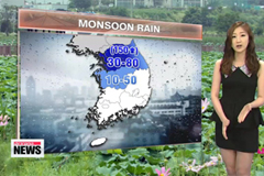 Monsoon rain relieves heat in Seoul