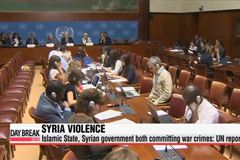 Islamic State, Syrian gov't committed war crimes: UN report