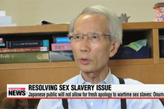 Japanese public will not allow for new apology to wartime sex slaves: Onuma