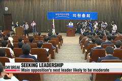 Korea's main opposition party facing leadership crisis
