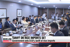 Korea sets 513% tariff on rice imports