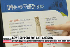 Korean gov't to expand 2015 anti-smoking budget 13-fold to US$145 mil.