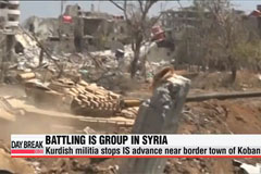 Syrian Kurdish militia stops IS advance near border town