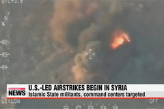 U.S. launches airstrikes on Islamic State targets in Syria