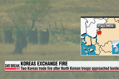 Two Koreas exchange fire across military demarcation line in Paju