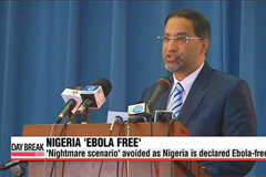 Nigeria declared Ebola-free, officials hail spectacular success