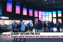 Sluggish global economy to cast cloud on Korea's key industries in 2015: FKI