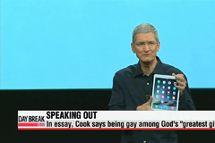 "Apple CEO Tim Cook says he's ""proud to be gay"""