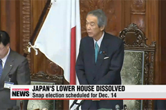 Japan's PM dissolves lower house of parliament, calls snap election
