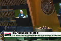 UN General Assembly votes to refer N. Korea to ICC for rights abuses
