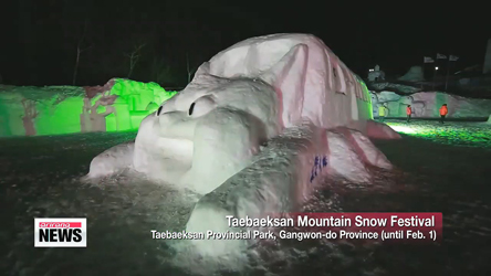 Annual festival creates wintry wonderland in Gangwon-do province