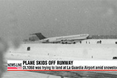 Plane skids off runway at New York's LaGuardia airport