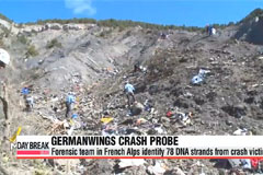 Germanwings crash: Forensic team identifies 78 crash victims via DNA strands