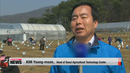 Seoul city goverment to activate 1,800 urban farms