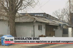 President Park checks progress of her deregulation drive