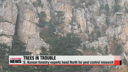 S. Korean forestry experts head to Mount Geumgang for pest control research