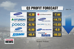 Q3 not looking bright for major domestic companies