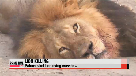 Cecil, the lion killed by U.S. dentist