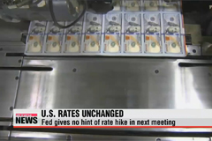 Federal Reserve leaves key U.S. interest rate unchanged