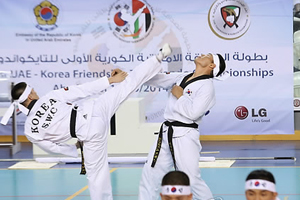 Taekwondo friendly in UAE