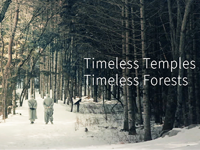Timeless Temples, Timeless Forest #300