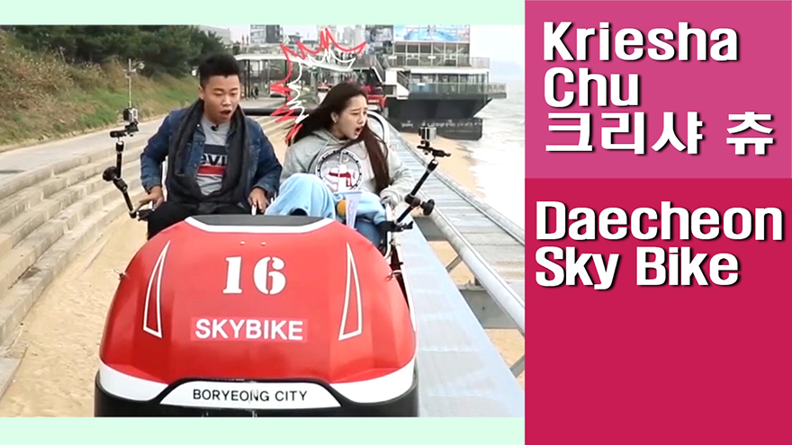 [Travel Agency] Daecheon Sky Bike, a panoramic view of the white Daecheon Beach and sea