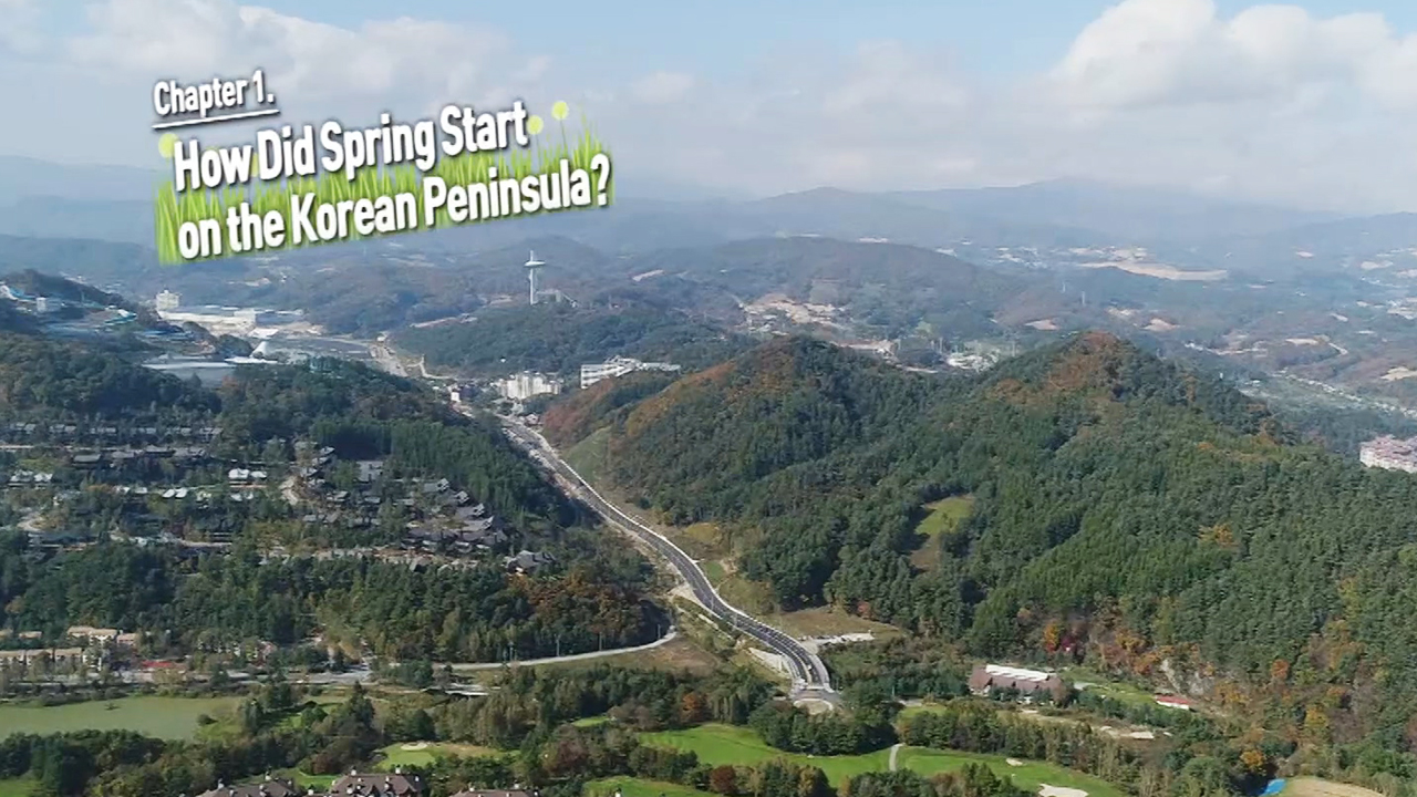 [Arirang Prime] Journey Toward Peace / ch1. How Did Spring Start on the Korean Peninsula?