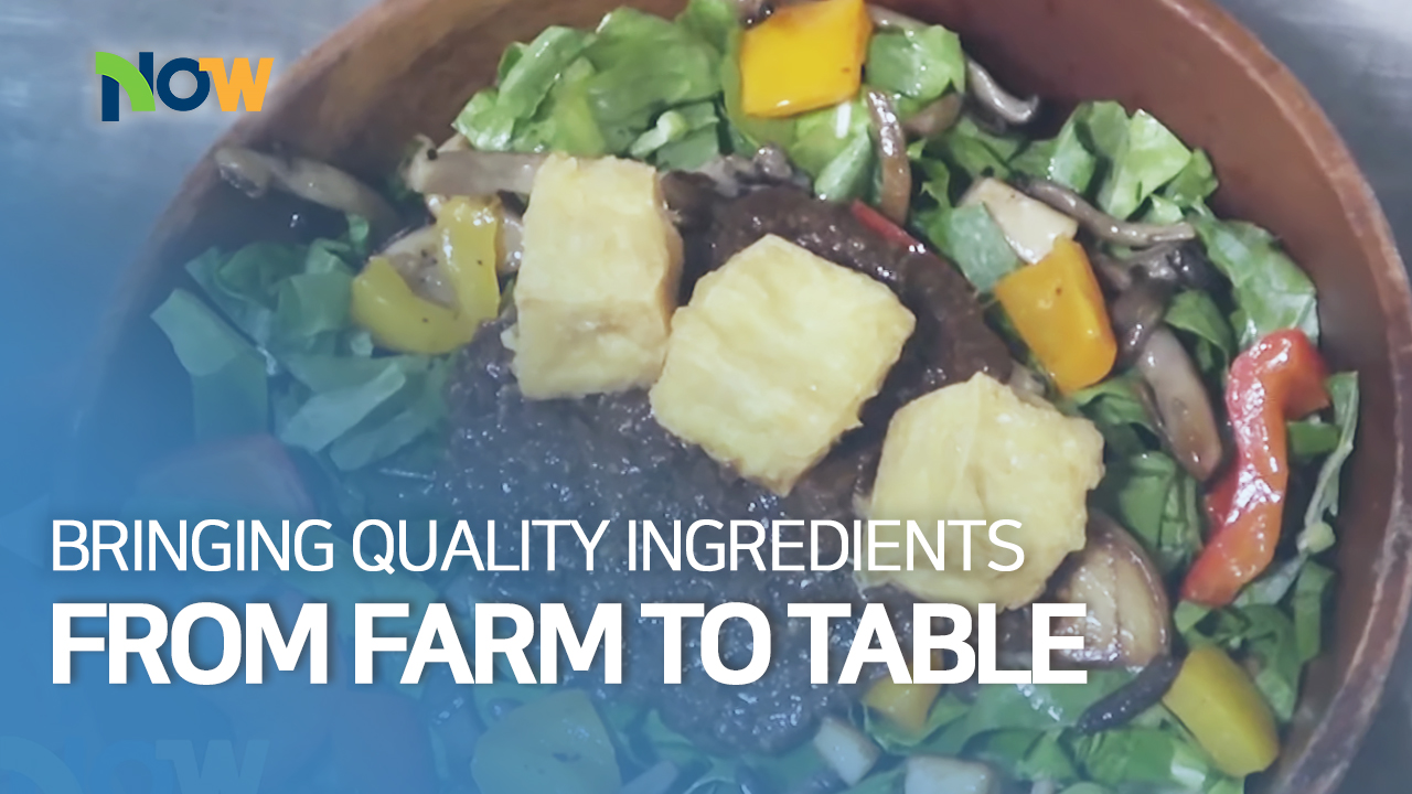 Bringing Quality Ingredients from Farm to Table