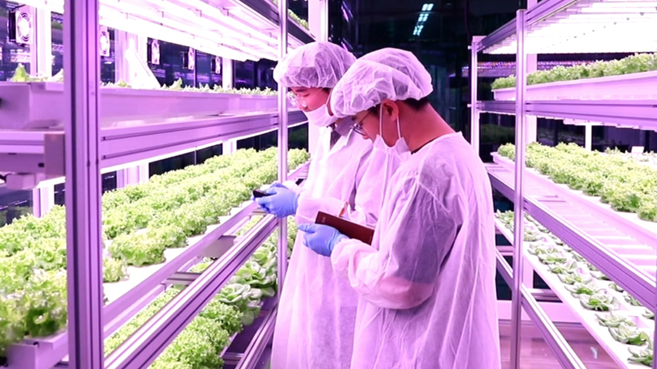 Ep.75 [ Rise of vertical farming in the city / Water purification for supply of clean water / G-FAIR KOREA ]