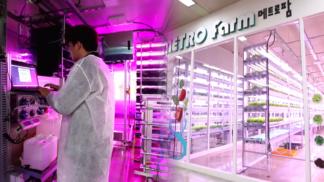 Rise of vertical farming in the city