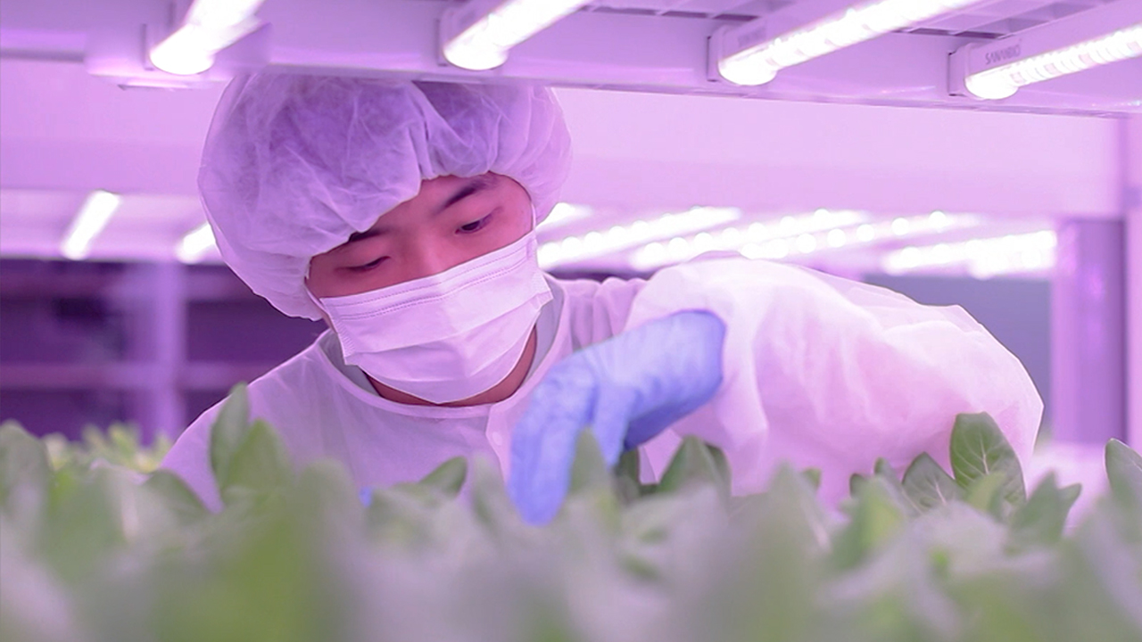 Ep.03 #Present & future of smart farming #Kangwon National University's Dept. of Regional Infrastructure Engineering #New technologies & varieties for smart farming
