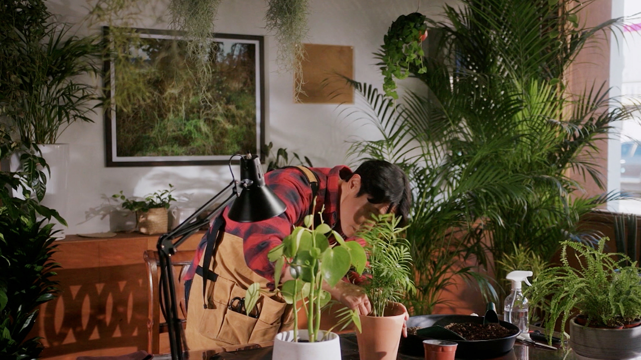 [LISTEN TO THE SCENE] PLANT CAFE, WARMTH